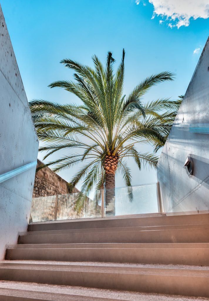 es baluad museum modern art palma 712x1024 - 15 photos that will make you want to visit Palma NOW!