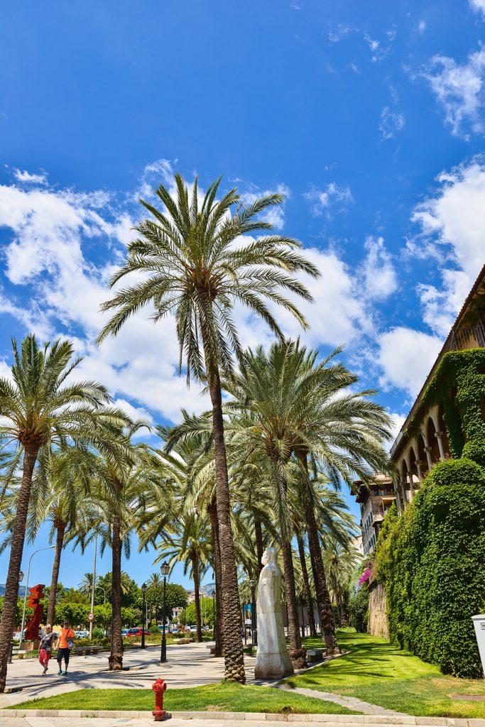 palma de mallorca 683x1024 - 15 photos that will make you want to visit Palma NOW!