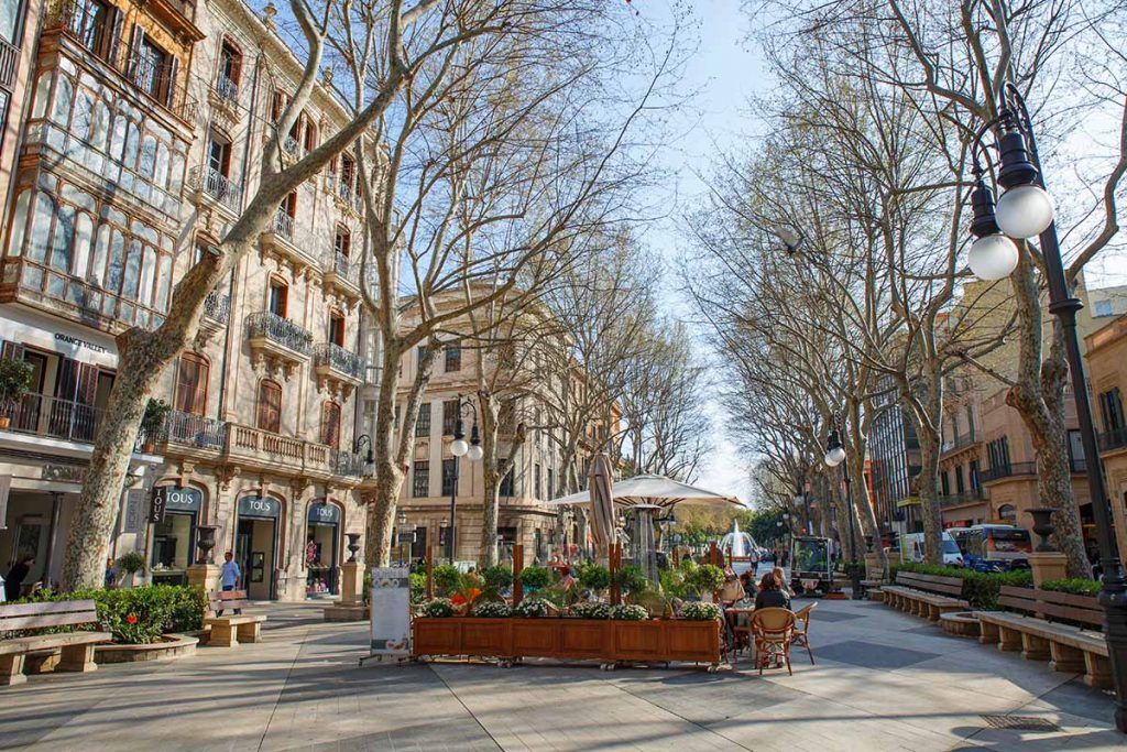 paseo del borne palma 1 1024x683 - 15 photos that will make you want to visit Palma NOW!