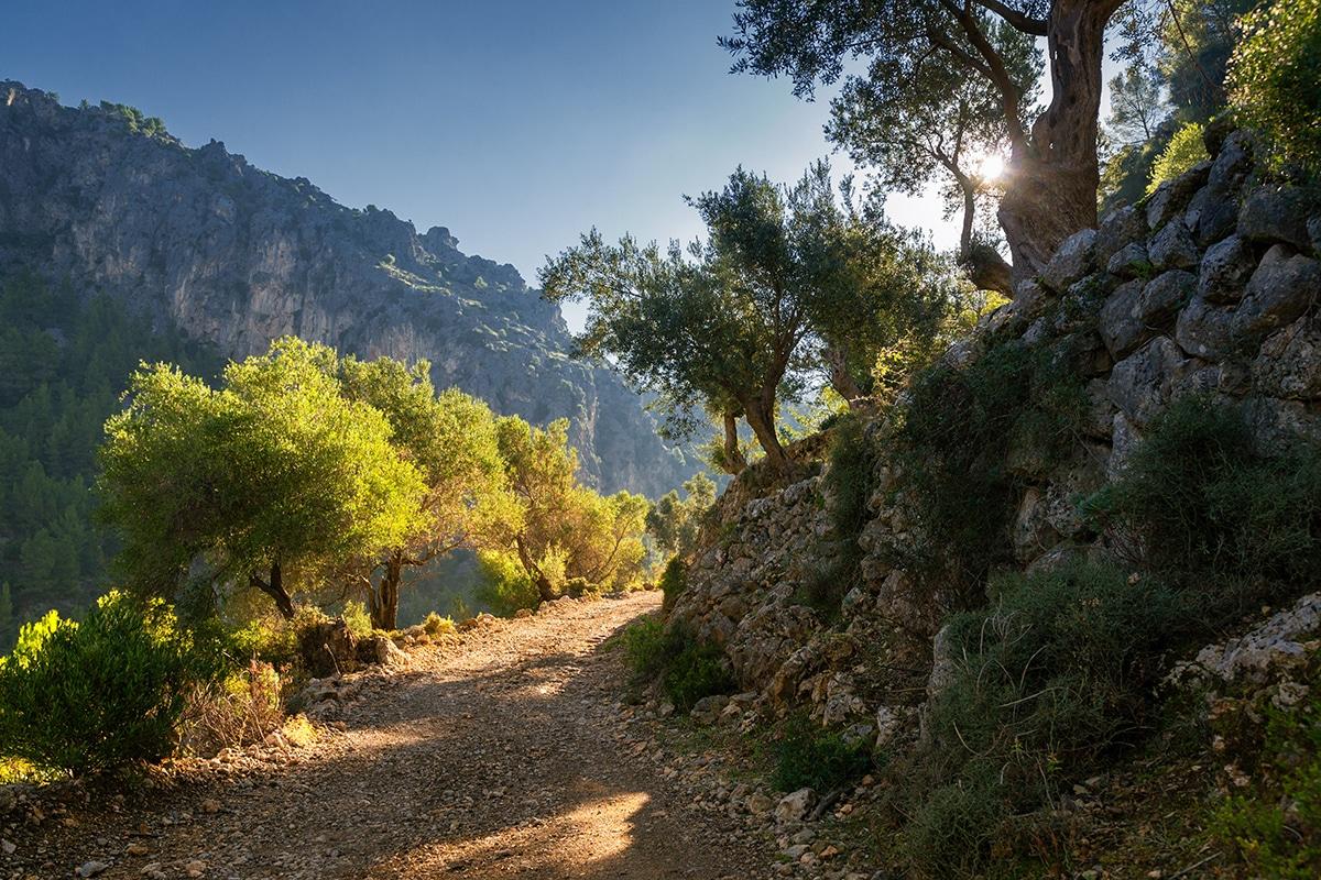 hiking tramuntana - 12 unmissable winter adventures on Mallorca